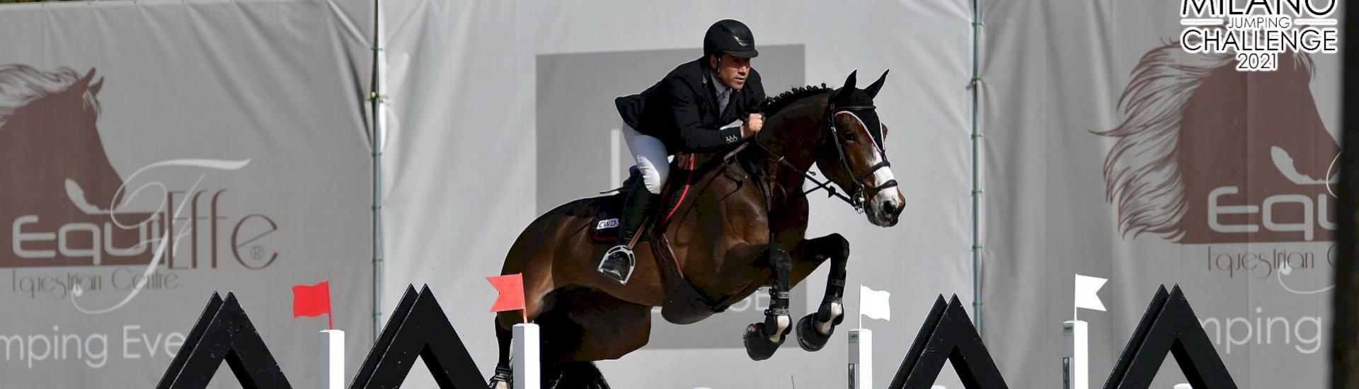 location/vente de chevaux et de poneys